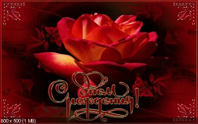 Поздравляем с Днем Рождения Ольгу (Oleyka) _b26912f7df36588891f5444d005e0676