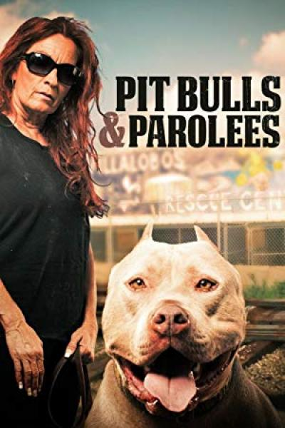 Pit Bulls and Parolees S13E03 A Family Connection 720p WEB x264 CAFFEiNE