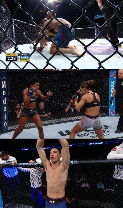 UFC Fight Night 135 1080p HDTV x264 -heavendl