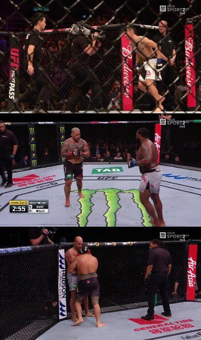 UFC Fight Night 142 1080p HDTV x264 -heavendl