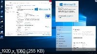 Windows 10 Professional VL 1809 RS5 by OVGorskiy 02.2019 (x86/x64/RUS)