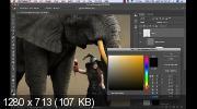 Фотоманипуляция. Девушка и слон (2019) WEBRip