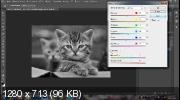 Создаем эффект сепии в Photoshop (2019) WEBRip