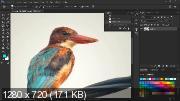 Полноценный курс по Photoshop (2019) PCRec