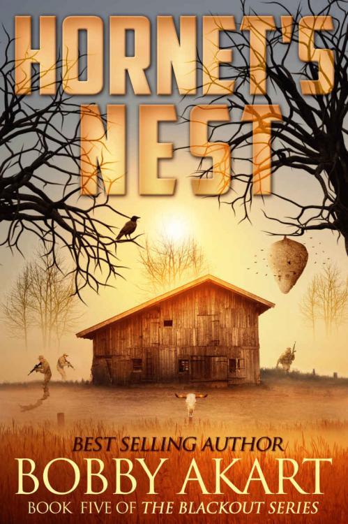 Hornet's Nest (The Blackout, n  5) by Bobby Akart