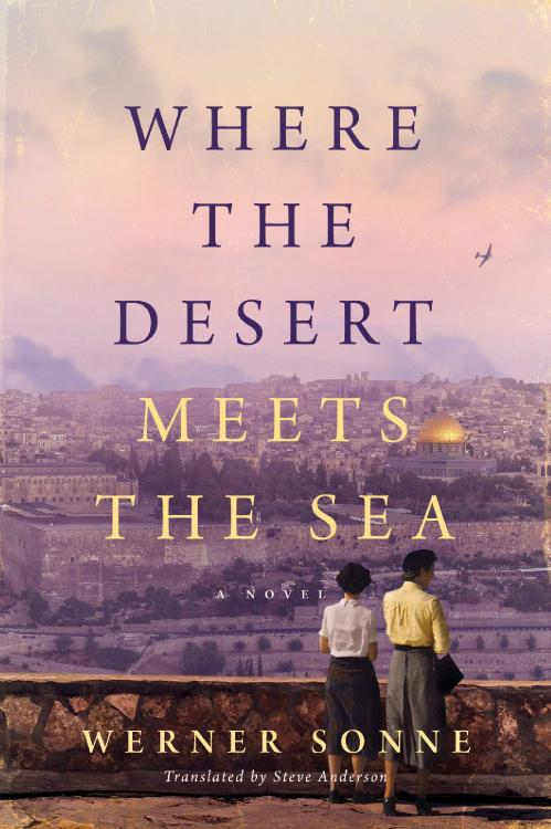 Where the Desert Meets the Sea - Werner Sonne