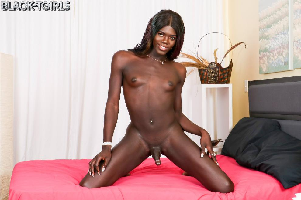 [Black-TGirls.com] Jack Flash - Joslyn Strokes And Cums! [23.04.2019 г., Shemale, Solo, Black, 720p]