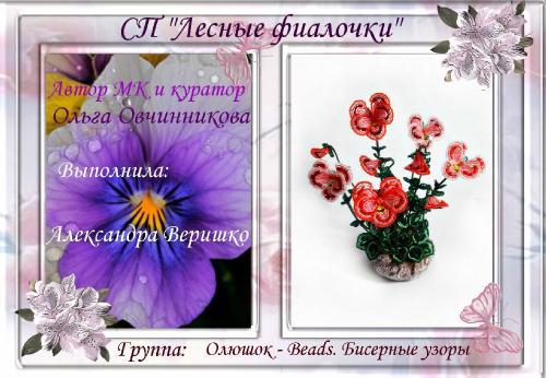 мои рукоделки _e83a0d8bdbe79d2a1402a56bc85a02ca