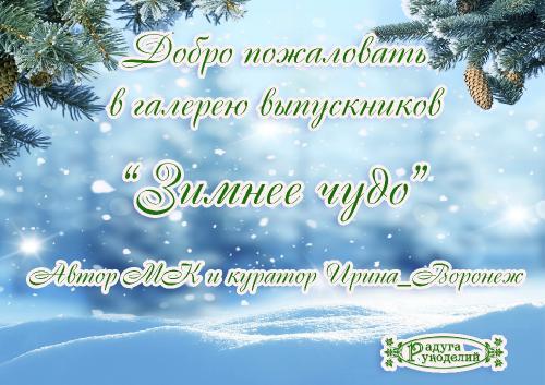 """Галерея работ """"Зимнее чудо"""" _092700f2682e4402f7bdbfd2c6e47ec5"""