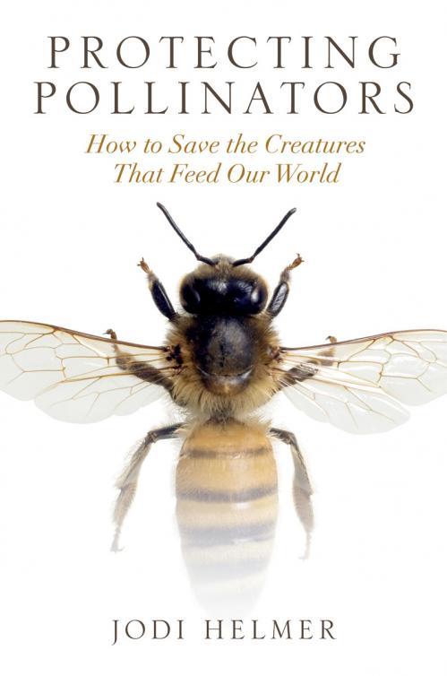 Protecting Pollinators by Jodi Helmer