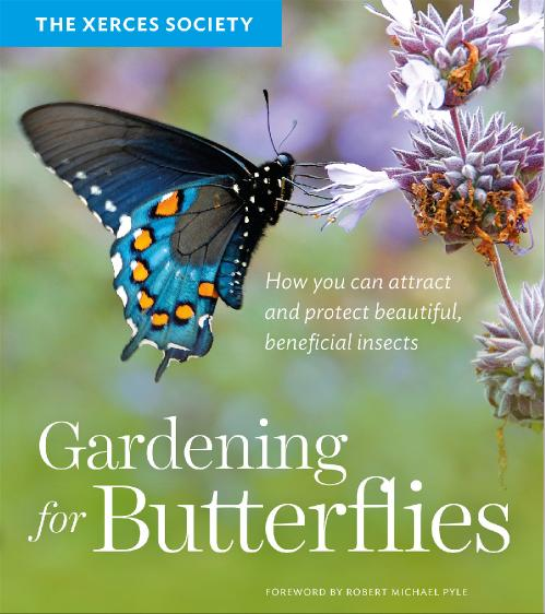 Gardening for Butterflies - How You Can Attract and Protect Beautiful, Beneficial