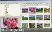 FastStone Image Viewer 7.1 Corporate Portable