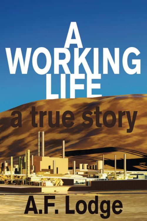 A Working Life A True Story