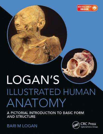 Logans Illustrated Human Anatomy  A Pictorial Introduction to Basic Form and Stru...
